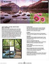Radian Flex Flyer Thumbnail
