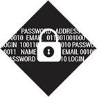 Cyber Intrusion